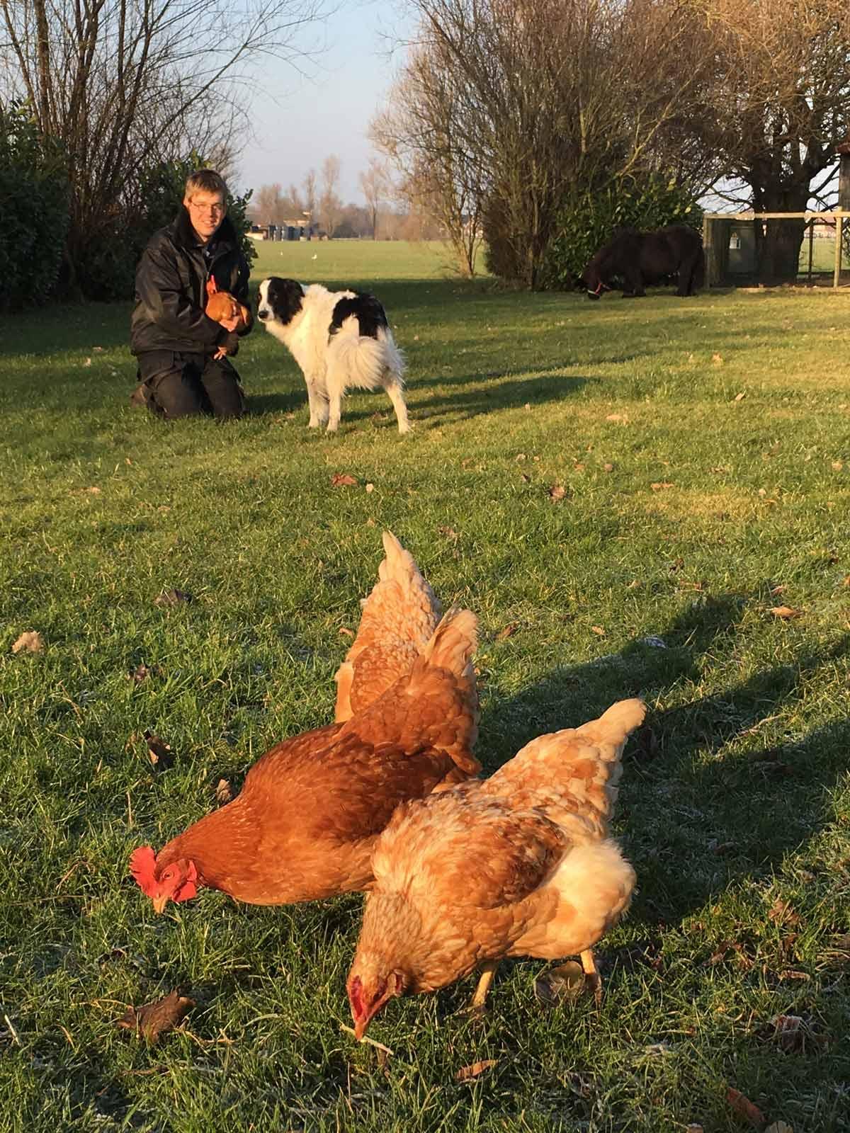 Met de dieren op Zorgboerderij Friesland